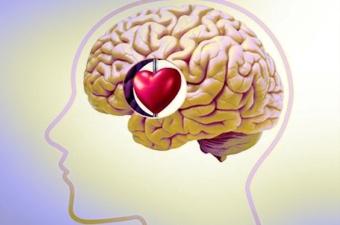 Diferencia entre emocion y sentimiento